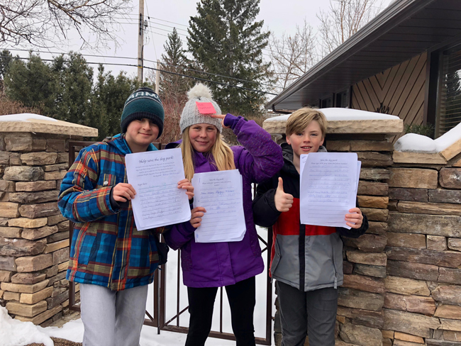 Dog Park Petition  Cambrian Heights Community Association